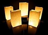 10 x Sacs à bougie papier lanterne blanc - plaine