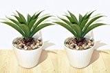 2 x Aloe Cactus (20cm) - Plantes Artificielles SANS POTS
