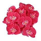 20x Artificielle Orchidée Papillon Corsage Poignet Fleur De Cheveux Rose Décoration De Mariage