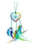 25cm x 6cm cœur amour Dreamcatcher Capteur de rêves Rainbow Regenbogen multicolore