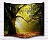 A.Monamour Soleil Brouillard Grand Arbre Feuilles Tombées Sentier Forêt Nature Paysage Mur Rideaux Tapisserie Rideaux Pour Enfants Chambre À Coucher