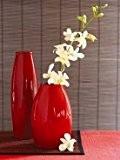 Affiche 30x40 cm Orchidées dans vase rouge / Orchids in red Vase KALLHOEFER