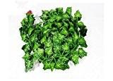 AlphaAcc Plantes artificielles à feuilles, décoration murale à suspendre, guirlande de lierre