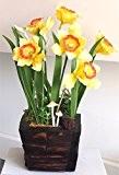"""Artificielles fait à la main jonquille Argile Fleur en bois Pot13.5""""Hauteur"""