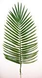 Artificielles - Feuille de palmier phoenix h 63 cm plastique pour exterieur d 27 cm superbe