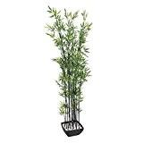 Bambou artificiel dans une coupe décorative, troncs sombres, 180 cm - faux bambou / décoration ambiance zen - artplants