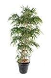 Bambou artificiel New UV résistant 6 cannes - extérieur balcon terrasse - H.180cm vert - taille : 180 cm