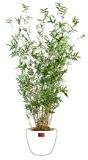 Bambou artificiel Oriental 11 cannes fines - plante d intérieur - H.160cm - taille : 160 cm
