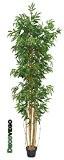 Bambou Grande Géant Plante Arbre Artificielle Artificiel Plastique 210cm avec Bois véritable Domaine Interne Decovego