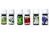 Belkin Aromathérapie Top Coffret cadeau 6Huile Essentielle 100% pure de qualité thérapeutique Sampler Kit 6/10ml (Lavande, arbre à thé, Eucalyptus, ...