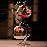 Bluelover Party décoration BRICOLAGE Micro paysage boule forme verre plante Vase maison jardin suspendu