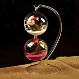 Bluelover Suspension boule Vase en verre forme hydroponique BRICOLAGE Micro bouteille Maison Jardin décoration Party