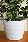 Cache-pot de qualité en plastique rigide blanc - Design strié moderne - Idéal pour les plantes d'intérieur - 28 cm ...