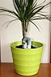 Cache-pot de qualité en plastique rigide vert citron - Design strié moderne - Idéal pour les plantes d'intérieur - 23,5 ...