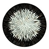 Cadran manuel Rond Etude de moquette En noir et blanc Ordinateur Chaise Salle de séjour Table à café Moquette Chambre ...