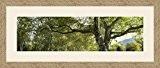 Cadres photos pêle mêle multivues Blanc Cassé 1 photo(s) 70x20 Passe Partout, Cadre photo mural 80x30 cm Naturel Beige, 3.5 ...