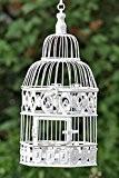 Cage à oiseau décorative de style colonial ancien Blanc Hauteur 39cm