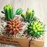 calcifer® 4pièces Cactus artificiel plantes Succulents pour maison bureau jardin mariage party Decor