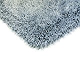 Canvey tapis 100x150cm oeuf de canard bleu / gris hirsutes Shaggy