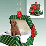 Conversation Concepts Chesapeake Bay Retriever Gift Box Green Ornament by Conversation Concepts