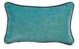 Coussin Carlotta velours turquoise et passepoil anthracite 45x30 ~ Autrement dit