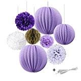 Décoration de 8 pcs Violet Lanterne Papier Pompon de Soie Boule Nid d'abeille pour Mariage Anniversaire Saint Valentin-SUNBEAUTY