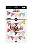 Doiy DYPARTYFL Cadre Photo Party Flag Magnets Aimant/PVC