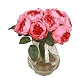 Fami 1 Bouquet 6 Têtes Feuille de Fleur de Soie Peony Artificielle Accueil Décor de mariage (Rose chaud)