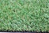 Gazon artificiel Paradiso, tapis de pelouse artificielle avec effet naturel, très robuste