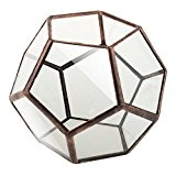 Generic Cage Vase de Fleurs en Verre Diamant Clair Forme Géométrique Décoration pour Anniversaire Mariage Noël - Cuivre 2, 10 ...