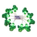 Guirlande Lumineuse de Cactus 10-LED Chaîne Lumière Décorative pour Jardin Maison
