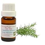 Huile Essentielle HEBBD d' ARBRE à THÉ ou TEA TREE 10ML (Melaleuca alternifolia) - Livraison Gratuite