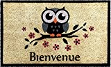 ID Mat 4575 Cosy Tapis Paillasson Imprimé Blanchi/Chouette Fibre Coco/PVC Beige 75 x 45 x 1,5 cm