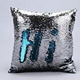 Internet Hi canapé lit Home Café Decor taie d'oreiller Carré housse de coussin Paillettes Invisible fermeture à glissière 40cm*40cm (F)