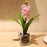 JHDH2-Herbe verte fraîche fleur artificielle faux gazon plantes argent quatre feuilles trèfle Shamrock trèfle fleur ensemble,8