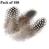 JUNGEN Perle en Forme de Plume 5-10cm Home Décoration Accessoire 100pcs
