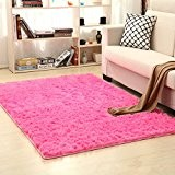 Labellevie Shaggy Tapis à longs poils Décoration Salon Cuisin Maison 60cm x 120cm