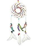 LaoZan Capteur de rêves avec perles colorées Pendentif plumes Pour voiture - Diamètre 16.5CM Blanc