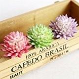 LianLe Fleur Artificielle Cactus Plante Viande Plastique pour Décoration de Maison -rose