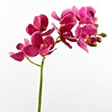 Lot 3 x Tige d'orchidée artificielle JASMIN, real touch, 7 fleurs, rose vif, 45 cm - 3 pcs Fleur artificielle ...