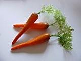 Lot de 3carottes avec feuilles–hohlattr appe en plastique, imitation alimentaire, Food, décoration de faux légumes factice, Idée de Cadeau