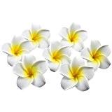 Lucky Will Lot de 100 6,1 cm hawaïenne frangipanier artificiel faux pétales de fleurs Frangipanier en mousse pour décoration de ...