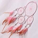 Malloom Plumes Mur Pendaison Décoration Dreamcatcher Décor Circulaire Artisanat (Rose)