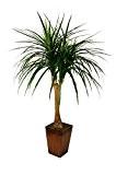 Meilleur artificielle 120cm 1,2m Pony-tail palmier Bureau véranda Tropical Intérieur Extérieur Jardin Plante