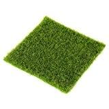 Miniature Gazon Artificiel Décoration Micro Paysage Bonsaï Artisanat vert 30*30cm