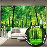 Murale arbres – mur decoration paysage naturel pure plante fleur foret relaxants avec trop de soleil photo mur deco chez ...