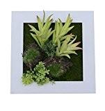 NEW style 3D Support mural Fleurs Artificielles Vieilles quatre feuilles plantes succulente Cadre en bois imitation Vase décoration de mariage ...