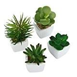 niceEshop(TM) 4 Pcs Mini Plantes Succulentes Artificielles avec Pot en Céramique (Vert)