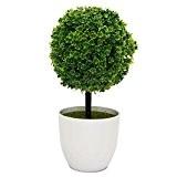 Nykkola Plante et fleur topiaire artificielle en pot Décoration de jardin ou de maison pour l'intérieur et l'extérieur Blanc