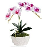 Ohmais pot de fleurs Artificielle Fleur avec Pot Décoratif Lavande Plantes artificielles Pour Décoration de Maison salon chambre jardin et ...